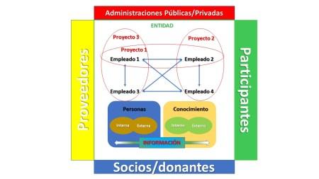 Flujo de la información en ONG